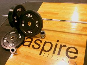 Aspire Fitness Eleiko Olympic Weightlifting Bar
