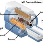mri-scanner-cutaway