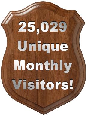 25,029 Unique Visitors in the Last 30 Days! post image