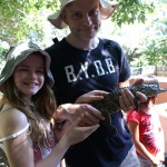 Baby Crocodiles at the Crocodile Centre in St Lucius
